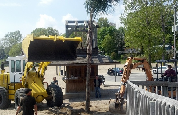 Planting palm trees in Port Dover