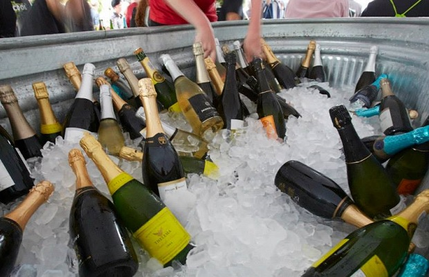 A selection of international and Ontario sparkling wines on ice. Photo (c) Steven Elphick & Associates
