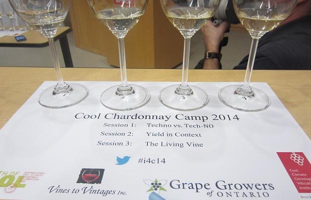 Cool Chardonnay Camp Photo: Michael Godel