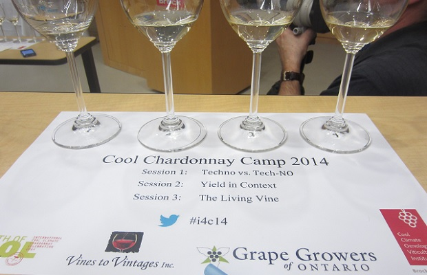 Cool Chardonnay Camp Photo: Michael Godel