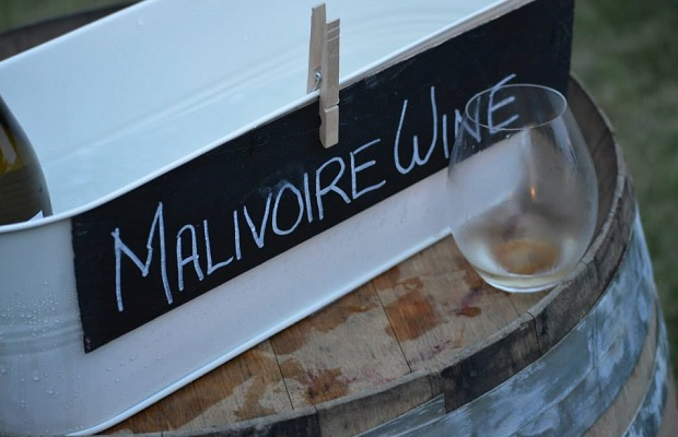 Malivoire and Riedel, Image (c) Elena Galey-Pride