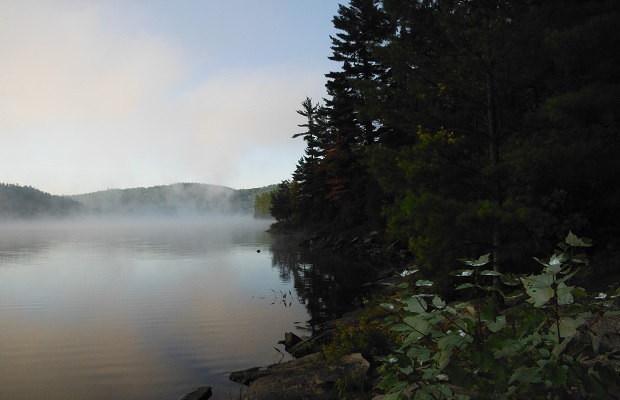 Algonquin Park, October 2014