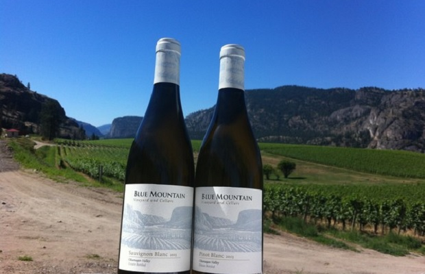 Blue Mountain Sauvignon Blanc and Pinot Blanc Phoo: (c) www.bluemountainwinery.com