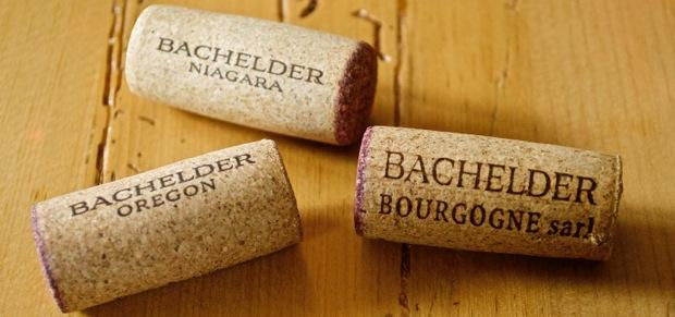 Bachelder Wines Photo: (Elene Galey-Pride, www.winestains.ca)
