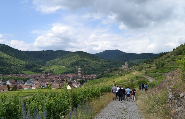 Kaysersberg, from the Grand Cru Schlossberg, (c) Cassidy Havens, http://teuwen.com/