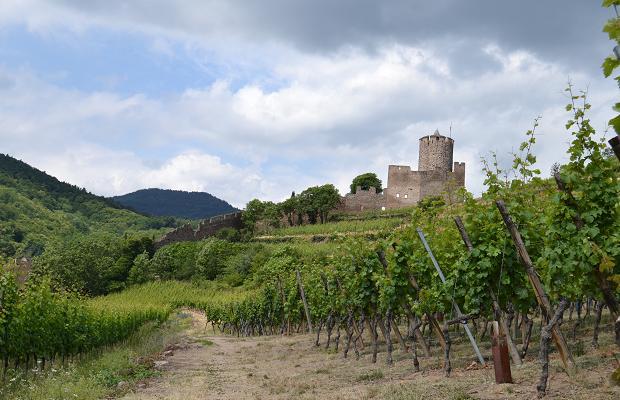 Schlossberg Castle, (c) Cassidy Havens, http://teuwen.com/