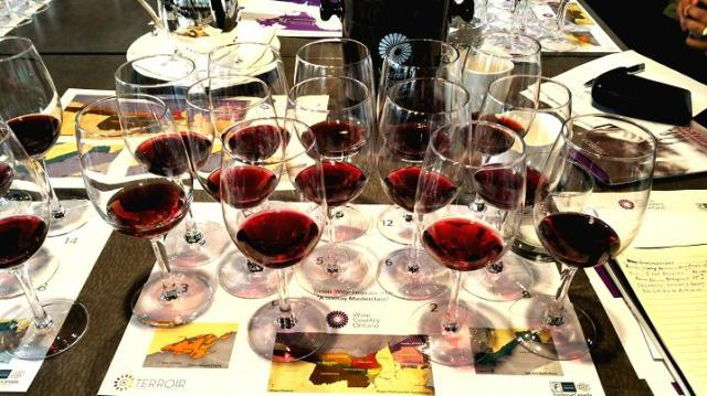 A Gamay Masterclass, Terroir Hospitality Symposium, May 11, 2015, Arcadian Court