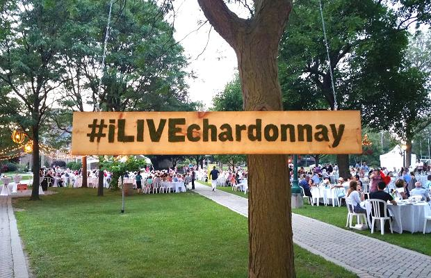 #ILiveChardonnay at the Cool Chardonnay World Tour Tasting and Dinner at Ridley College