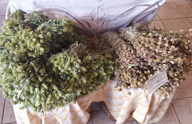Kalavryta Mountain Tea