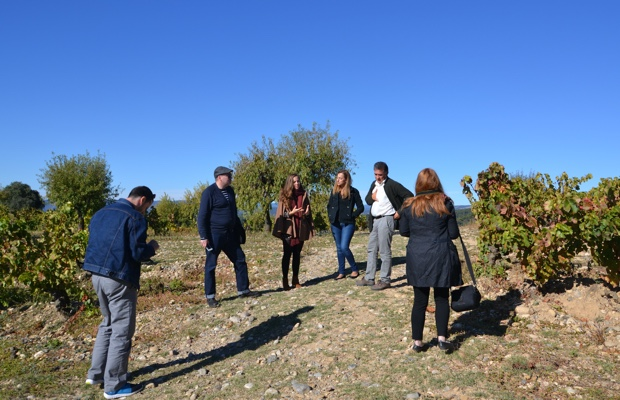 Canadian journalists in the vineyards of Secastilla, Somontano. Photo (c) Ivo André Alho Cabral