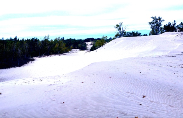 The Dunes, Sandbanks, Prince Edward County