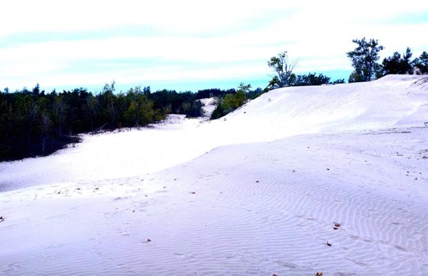 The Dunes, Sandbanks, Prince Edward County