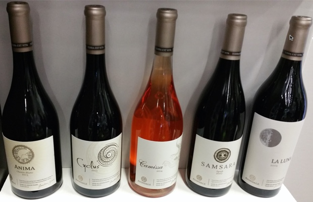 Avondale Wines at Cape Wine 2015