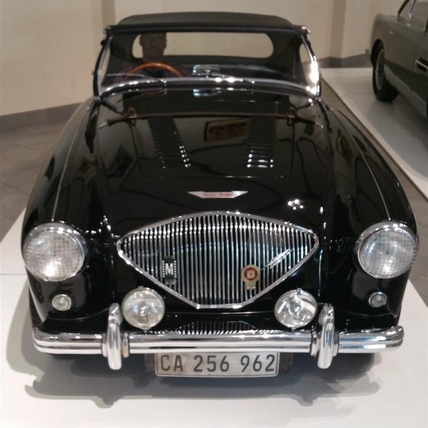 Godello behind the wheel of an Austin-Healey 100 M, Franschhoek Motor Museum