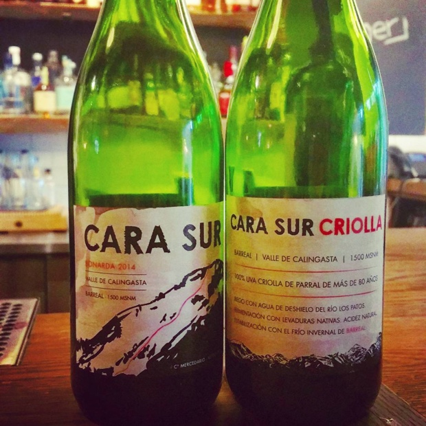 Most exciting wines tasted in a long time @winesorarg #carasur #bonarda #criolla #argentina #valledecalingasta
