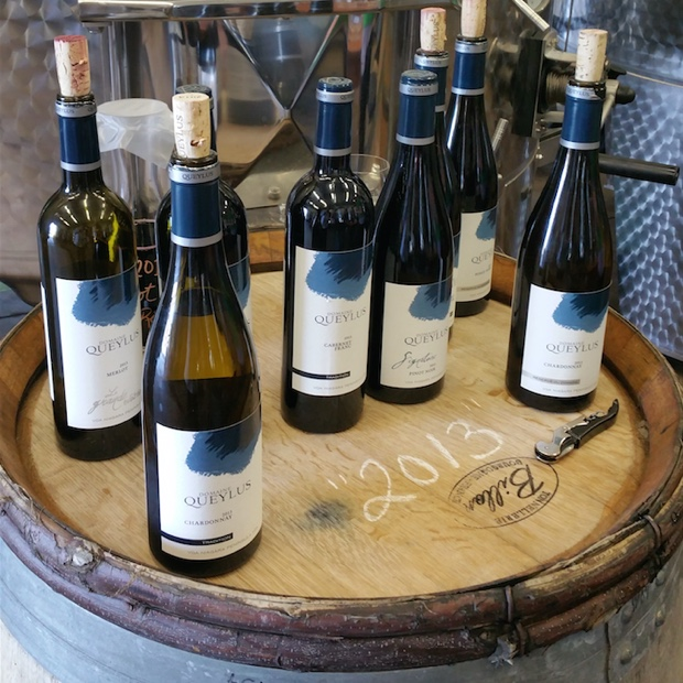 The wines of Domaine Queylus