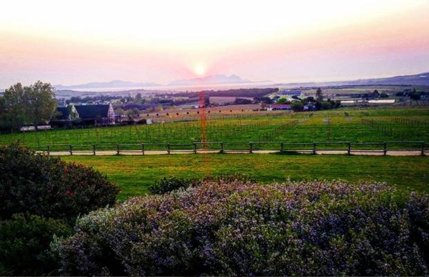 Working on South Africa with a sundown over Stellenbosch @WOSACanada