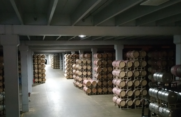 The barrel cellar at Frei Brothers