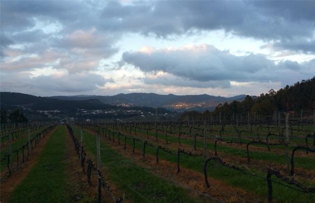 Vinho Verde, Portugal