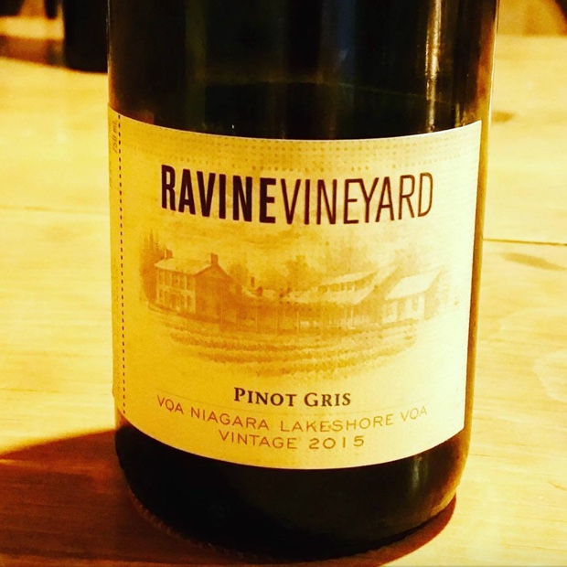 Marty and Ben establish a new verity for #PinotGris @RavineVineyard ... There will be followers. #i4c16 #niagaralakeshore