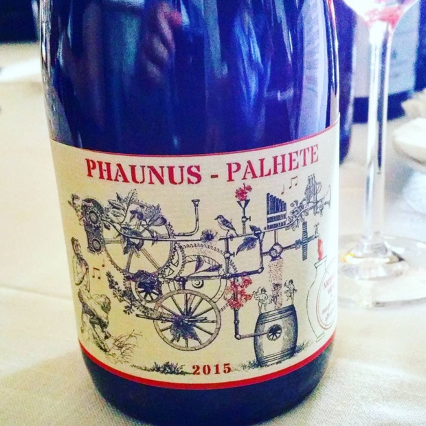 amphora-2-phaunus-palhete-2015-8020-loureiro-vinhao-again-no-reference-point-chimerical-monkwine