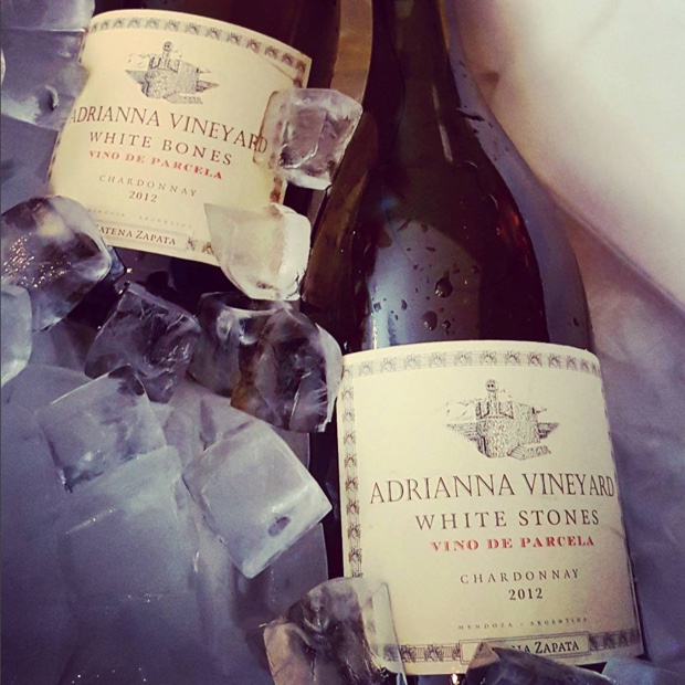 """Bones sinking like stones, all that we fall for."" @LauraCatenamd we live in a beautiful world when #chardonnay does this, and that #adriannavineyard #catenawines #bodegacatenazapata #gualtallary #tupungato #mendoza #vinodeparcela #whitebones #whitestones"