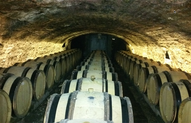 barrel-cellar-at-domaine-long-depaquit