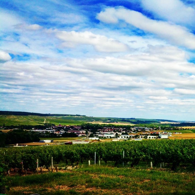 Mysteries of #climat soil and orientation in #chablis and les #grandcru before the wood