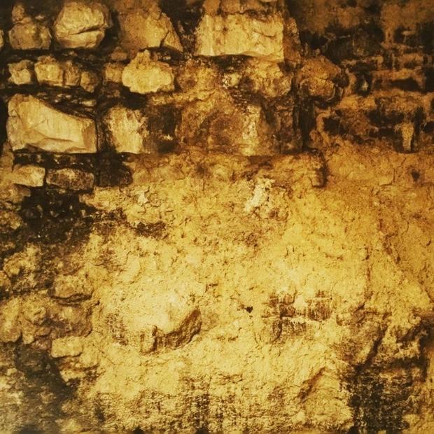 descending-substratum-dans-la-cave-chablisbrocard-kimmeridgian-portlandian-calcaire